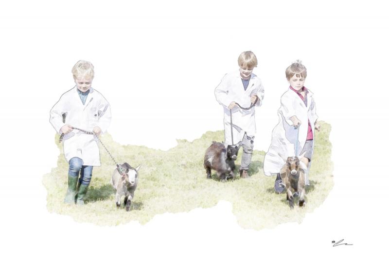 Walk The Goats
