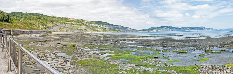 Lyme Regis 6th July 2019 A panoramic view eastwards from the Lyme Regis sea wall at low tide