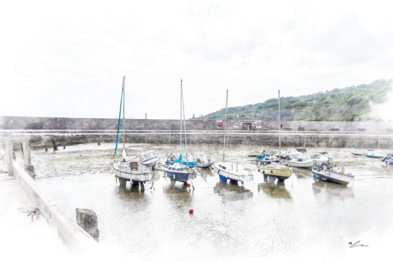 Low Tide Harbour